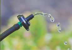 Queen Creek to Offer Free Drip System Workshop Aug. 5