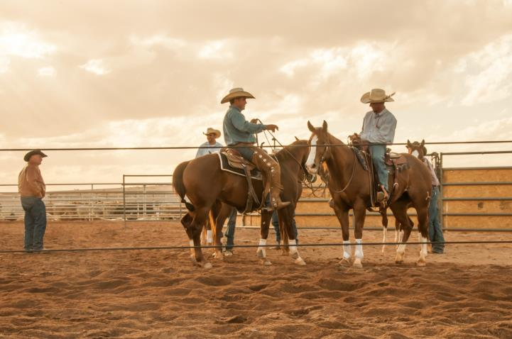 Cowboys on horseback Horseshoe Park