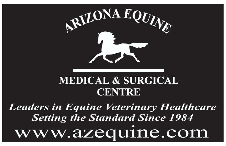 az equine logo